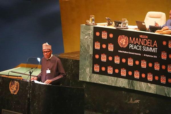 尼日利亚总统布哈里