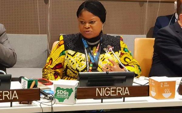 尼日利亚总统特别助理在现场致辞